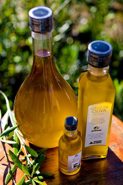 Azeite de Oliva - Acervo Setur - MG