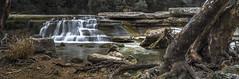 Cascade (keith_shuley) Tags: cascade escarpment stream creek bullcreek austin texas olympus