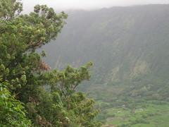 Waipi'o Valley - Valley of the Gods