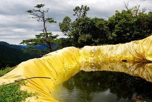 黃色大水池