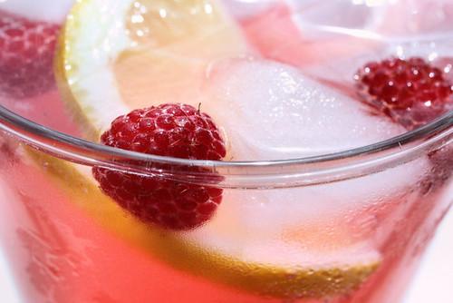 raspberry cooler 3394 R