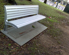 New park bench in Balmain