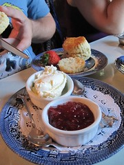 Scones at the Tea Cozy