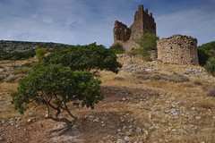 Mastic trees and castle (Image-Ex) Tags: greece chios