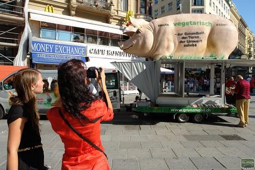 Viele Touristen fotografieren oder filmen das Grunzmobil