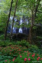 Reunion - Anse des Cascades (Rolandito.) Tags: reunion des cascades anse