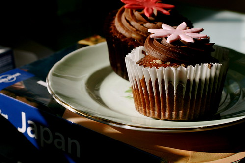 Saturday: Cupcakes and Japan Guidebooks