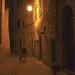 Via della Rena in Certaldo Alto at night