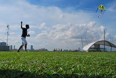 DSC_0186 (matzhuang) Tags: sun grass marinabarrage