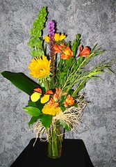 "#52ED $45 A vibrant bouquet of yellow centered sunflowers, alstroemeria lilies, liatris, yarrow, bells of Ireland, are accented with a lovely variety of foliage, raffia, and a colorful butterfly. • <a style=""font-size:0.8em;"" href=""http://www.flickr.com/photos/39372067@N08/3880365662/"" target=""_blank"">View on Flickr</a>"