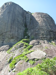 IMG_8552.JPG (amadeujr) Tags: brazil nature rio brasil forest barradatijuca floresta ilha tracking trilhas tijuca pedradagavea gaveastone