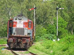 IMG_1471 (Ankit Bharaj) Tags: canon is diesel indian bank locomotive 100 railways ldh semaphore ankit sx irfca chakki bharaj wdg3a
