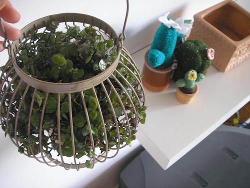 vaso-plantas-sala