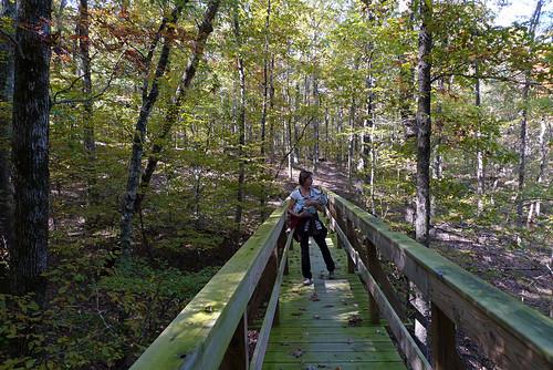 Caddo Bend trail