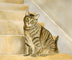 cat_on_stairs
