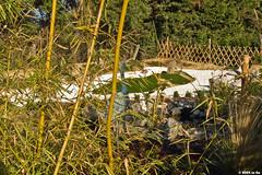 Vue depuis le Sud Est (Le No) Tags: 31 jardinjaponais hautegaronne stlon