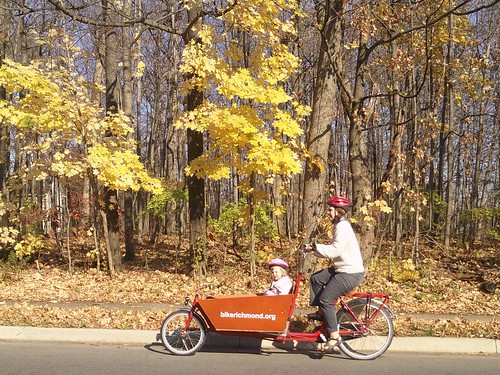 Fall box bike commute