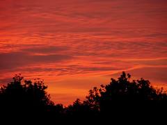 Paseo por el cielo (Fotos de vida.) Tags: sunset atardecer zonsondergang tramonto sonnenuntergang coucher prdosol ocaso tarragona solnedgang vespre apus zalazaksunca solnedgng gnbatm  coucherdusoleil  auringonlasku  zachdsoca rojizo cielosky apusdesoare matahariterbenam