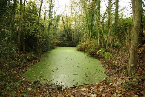 Reservoir for walled garden