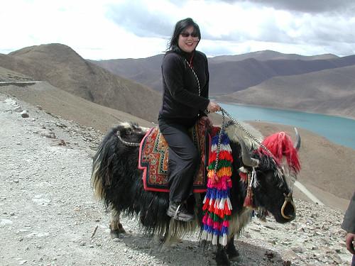 tibet 2000