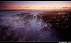Strange little creatures of the sea...every one of them has their part to play. (J.P.Robertson) Tags: ocean life light sea plants mist beach water sunrise rocks pacific australia predawn blend dicky alemdagqualityonlyclub