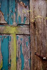 LAMBEAUX (Mary.Do) Tags: door bourges jardin porte marais robinson