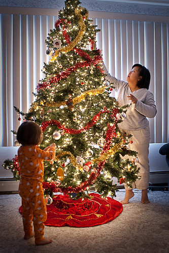Decorating for Christmas (by John Brainard)
