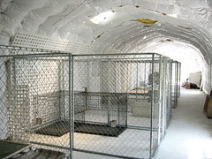 SteelMaster Steel Dog Kennels