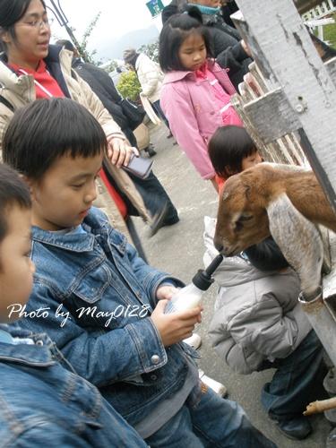 2009 12 20_45可達羊場.jpg
