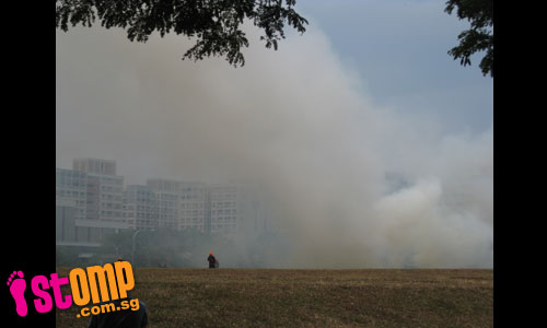 Yet another raging bushfire at Tampines