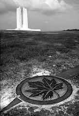 La Feuille (Jean-Luc Léopoldi) Tags: world art monument emblem leaf maple war noir 1st canadian national et blanc feuille déco vimyridge dérable 1èreguerremondiale memorialbw