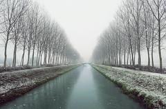 Endless winter.... (Alex Switzerland) Tags: italy italia italien lombardia lombardei landscape freddo cold winter snow schnee neve canon eos 6d mist fog foggy nebbioso atmosfera