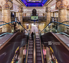 Harrods, Knightsbridge, London, UK (davidgutierrez.co.uk) Tags: london architecture art city photography interior davidgutierrezphotography nikond810 nikon urban travel color londonphotographer photographer uk harrods knightsbridge departmentstore shopping luxury design building colors colour colours colourful vibrant buildings england unitedkingdom 伦敦 londyn ロンドン 런던 лондон londres londra europe beautiful cityscape davidgutierrez capital structure britain greatbritain ultrawideangle afsnikkor1424mmf28ged 1424mm d810 arts landmark attraction architecturaldesign vivid interiordesign southkensington