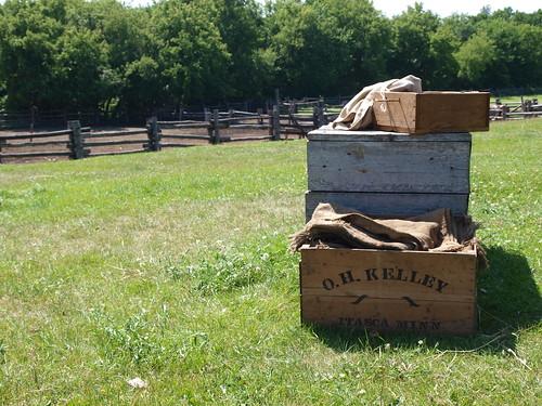 Kelley Farm 3