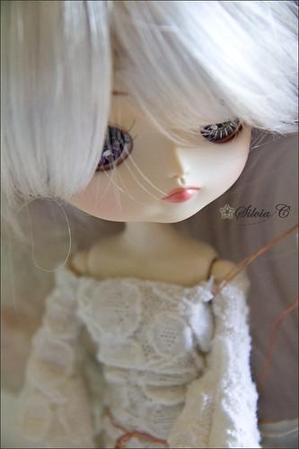 IMG_1553