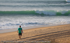 IMG_6026 (Dhammika Heenpella / Images of Sri Lanka) Tags: sea vacation people holiday man tourism beach sport fun happy coast aqua asia surf waves village surfer board contest competition surfing tourists coastal shore enjoy surfboard surfers srilanka southeast watersports activity visitors lk uva foreigners enjoying fishingvillage holidaying arugambay pottuvil placeofinterest potuvil uvaprovince surfingpoint dhammikaheenpella potuwil theimagesofsrilanka heenpalla visitsrilanka2011