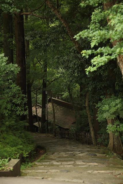 林間の石段