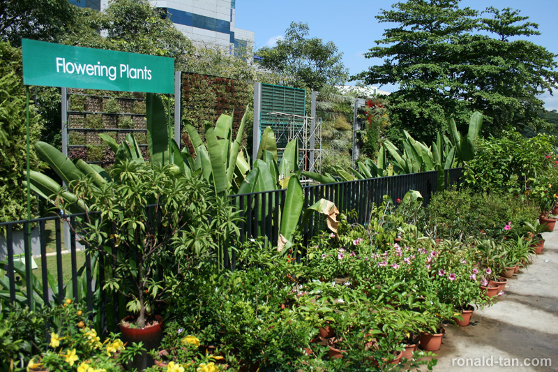 HortPark - The Gardening Hub