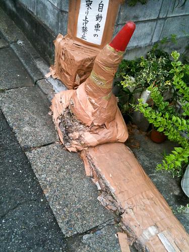 Tokyo Photo jog - Mummified cone