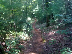 Turner Creek Trail 1