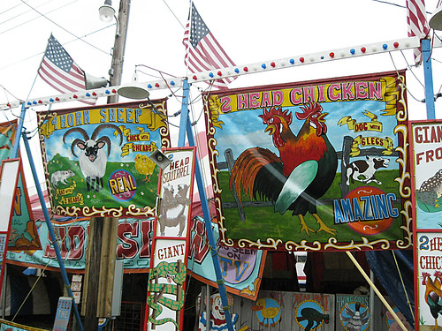 Westmoreland County Fair 2009:  Freak show.