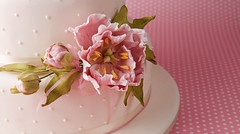 Pink peony by J Clitheroe Photography (nice icing) Tags: wedding cakes cake sugar icing weddings cmwdpink june2009 cakesbylynette