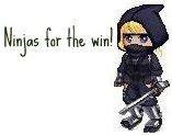 Ninja2