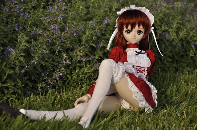 Dollfie Dream Asuka アスカ Panchira