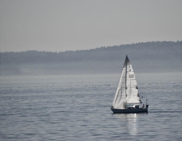 sailboat in Seattle harbor