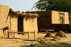 Just A Village House (Amir Mukhtar Mughal   www.amirmukhtar.com) Tags: pakistan house canon bed village beds traditional amir punjab mughal mughals villagehouses mu
