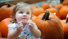 (Kory Booth) Tags: portrait halloween pumpkins pumpkinpatch d700 importedkeywordtags thechallengefactory