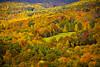 Autumn Day Hike to Mohonk (kotobuki711) Tags: autumn trees newyork fall grass pine oak october view scenic hike foliage trail maples gunks preserve newpaltz mohonk dayhike mohonkmountainhouse shawangunkmountains mohonkpreserve canon50d flickrunitedaward