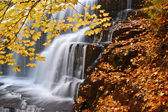time to change (almostsummersky) Tags: longexposure autumn orange cliff newyork fall water leaves yellow waterfall stream stones gorge ithaca cascadilla norwaymaple