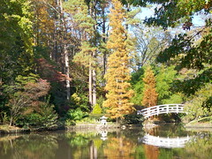 Lake, Big Lake (melisabates) Tags: nc dukegardens fall09